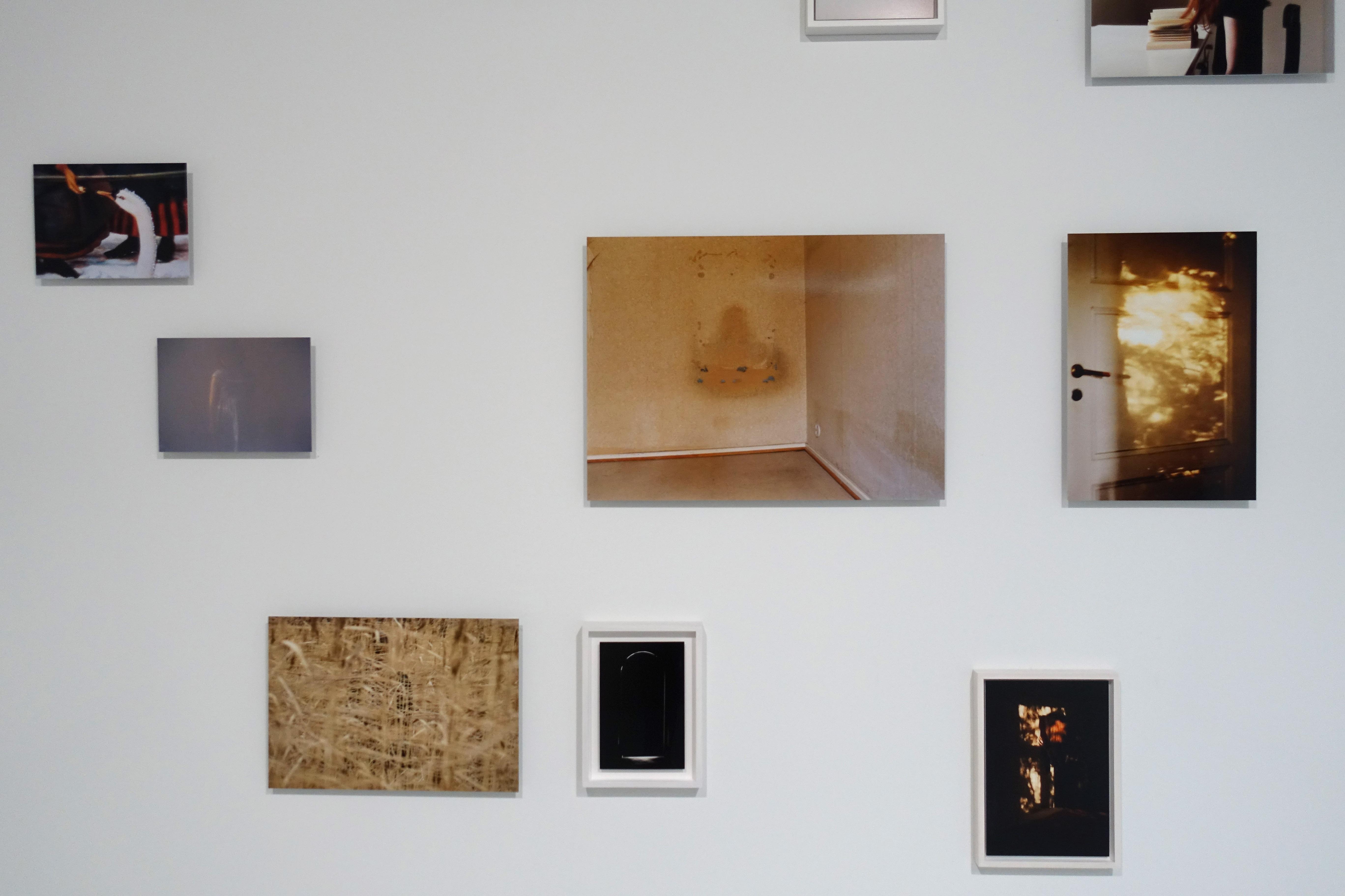 Taiteilijatapaamisia Porin taidemuseossa: Anni Leppälä