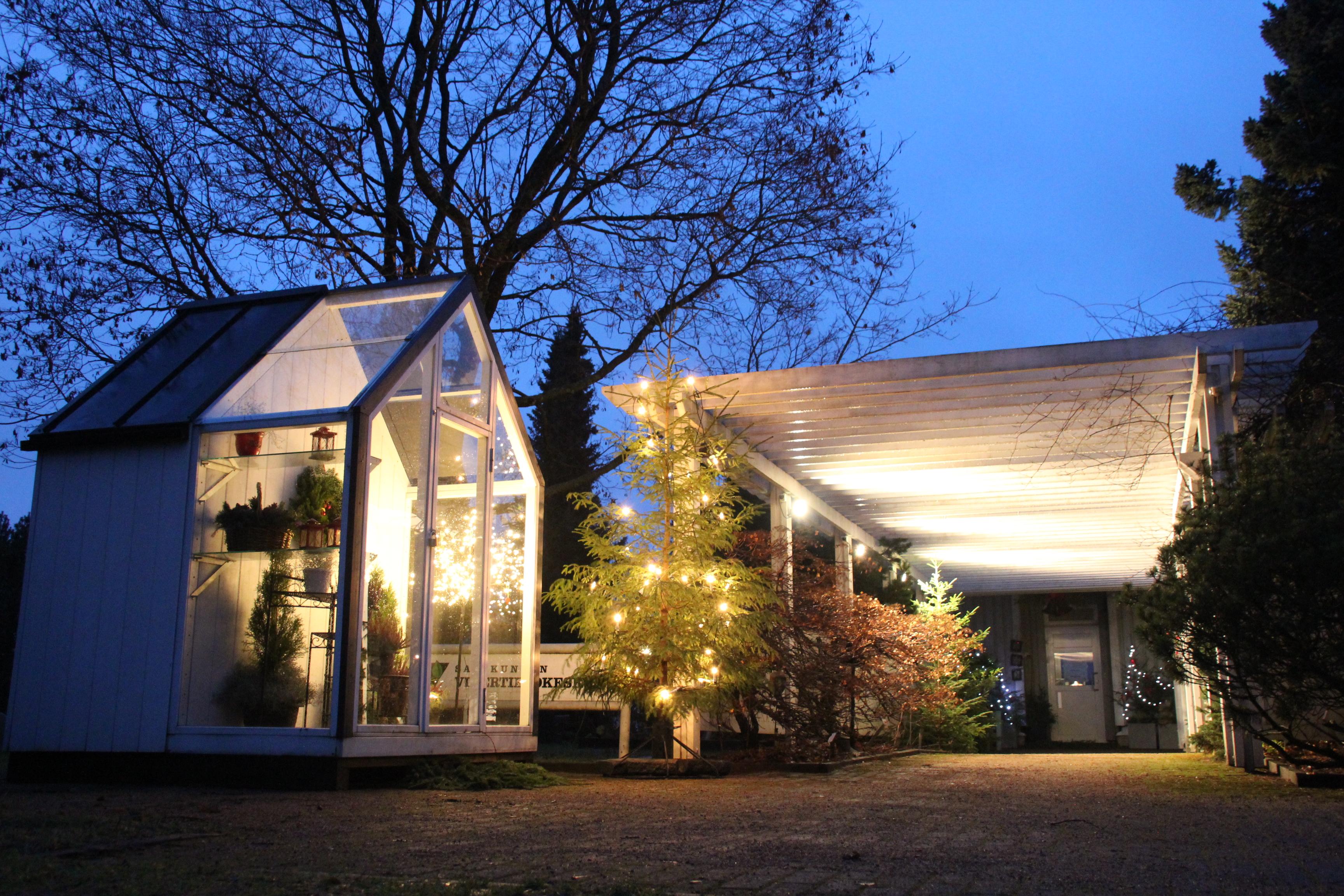 Satakunnan Vihertietokeskuksen perinteinen joulunavaus