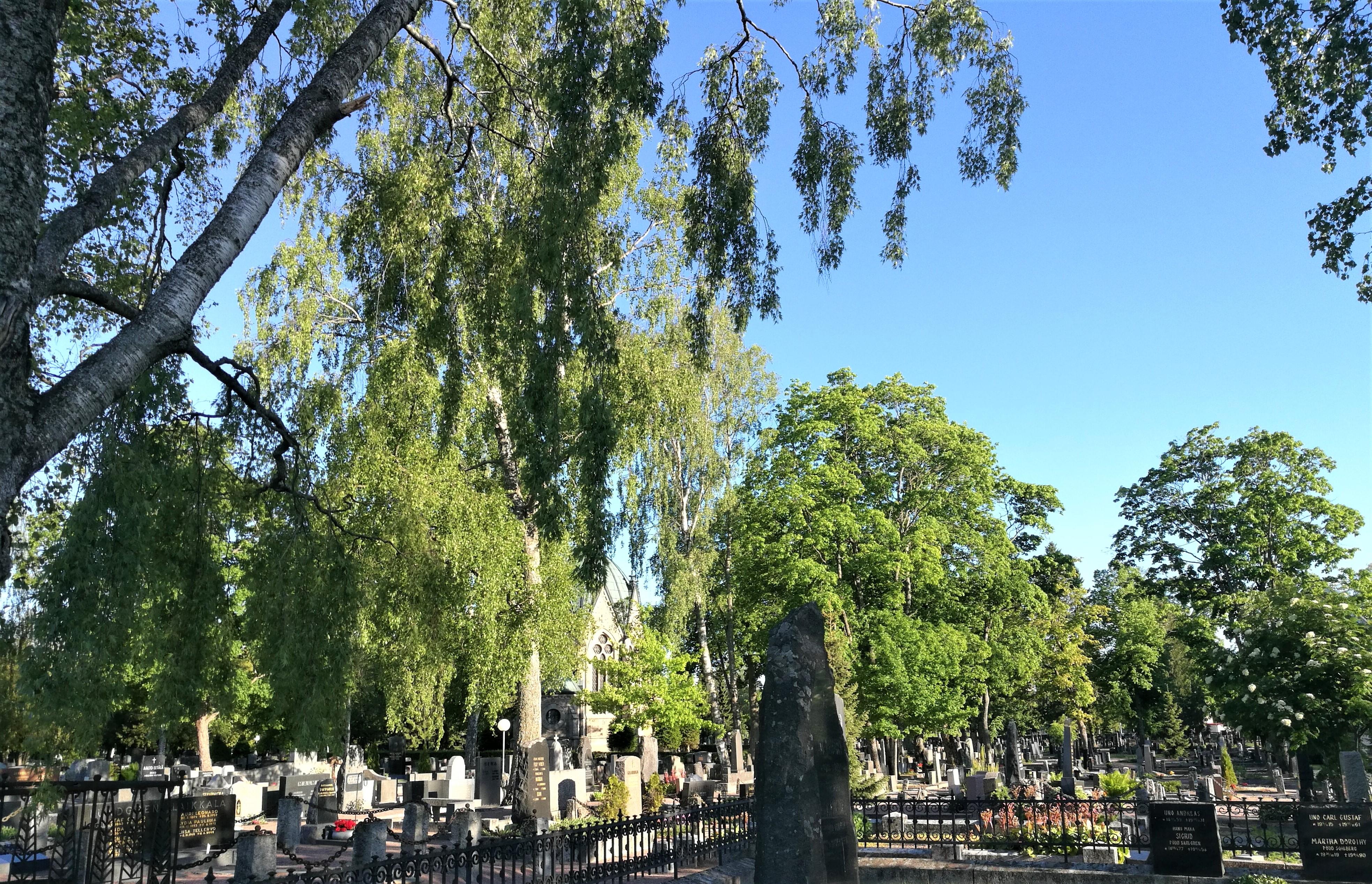 Pyhäinpäivän opastettu Käppärän hautausmaakierros,MAKSULLINEN